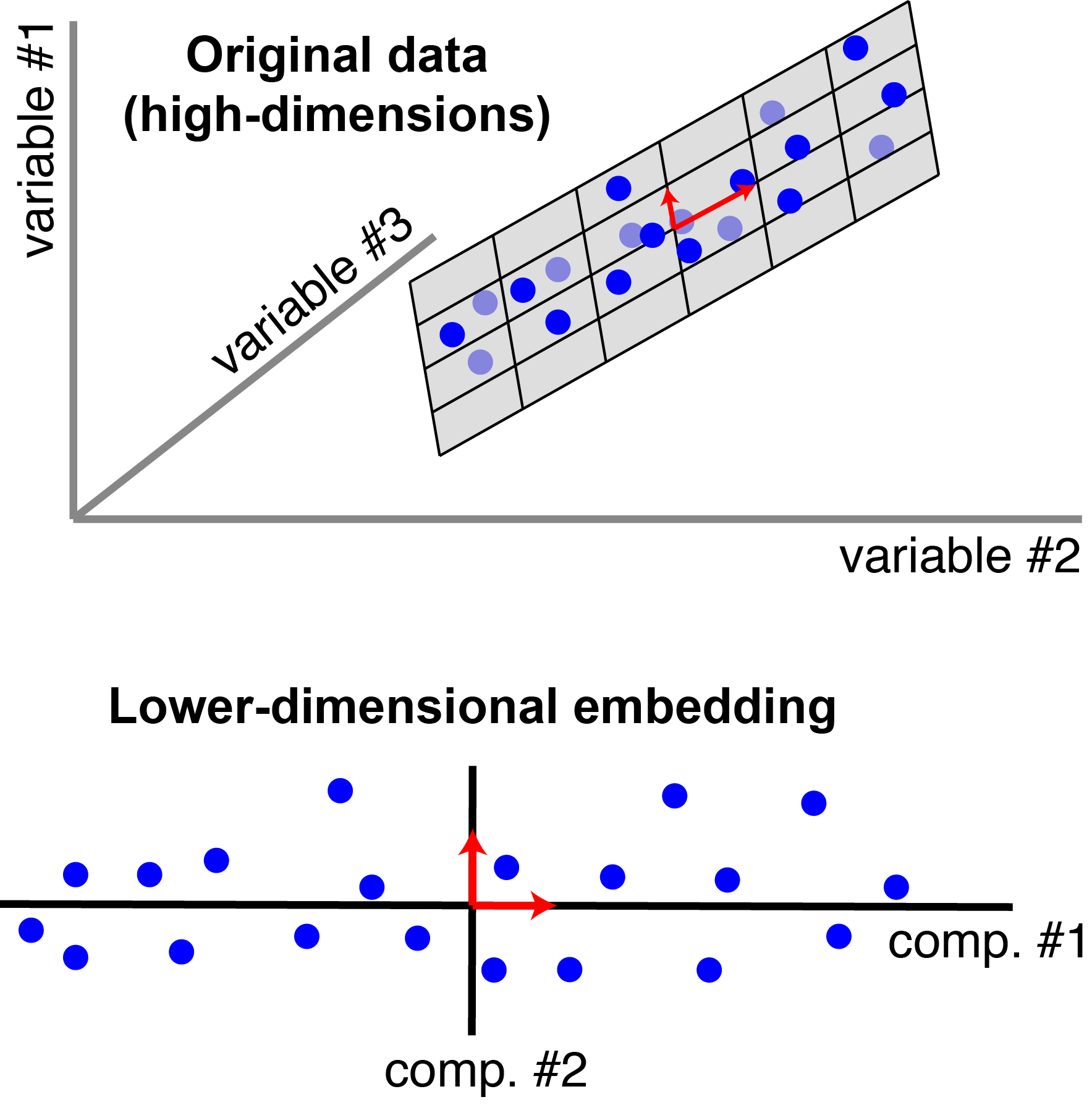 Each blue point corresponds to an observation (a row of $A$). There are $n=20$ observations, each with $p=3$ features. In this schematic, PCA reduces the dimensionality from three to $r=2$. In particular, it finds a pair of orthogonal vectors (red arrows) that define a lower-dimensional space (grey plane) which captures as much variance as possible from the original dataset.
